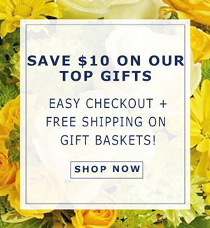 Save $10 on our Top  Gifts. Easy Checkout + Free Shipping!